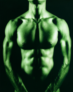 muscularbody